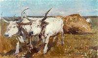 buffaloes by romualdo locatelli