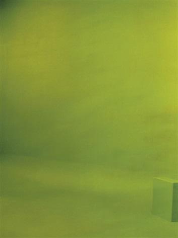 green screen 5 by liz deschenes