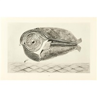 histoire naturelle (34 works) by max ernst
