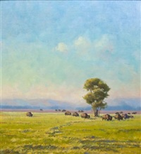 bison at antelope flat by bill sawczuk