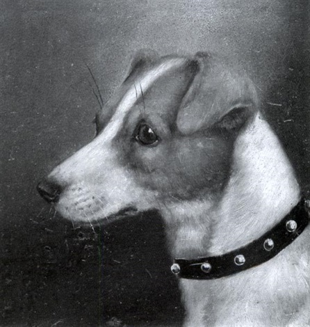 head of a terrier head of a jack russell terrier 2 works by edward aistrop