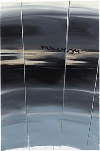 elevator (francis fukuyama) by zbigniew rogalski