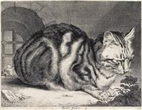 the large cat by cornelis visscher