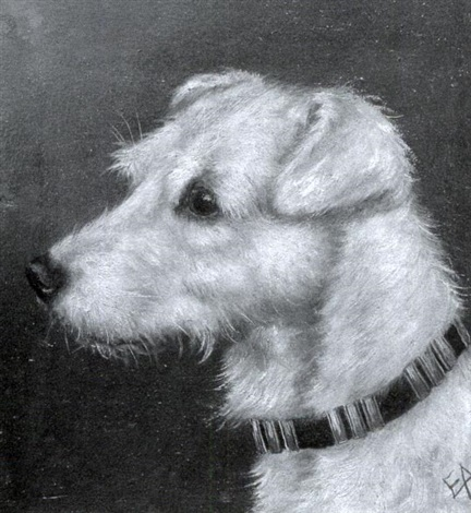 head of a wirehaired fox terrier head of a cairn terrier 2 works by edward aistrop