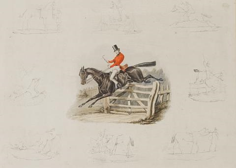 the life and death of a racehorse by rudolph ackermann