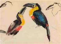 toucans by frank dobson