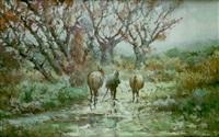 mulero bajo la lluvia by jose azpilicueta