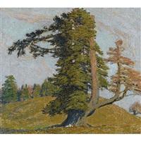 le plus beau sapin de la montagne de boujean by jean philippe edouard robert