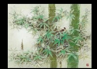 bamboo woods by takao yamazaki