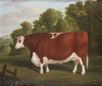 a portrait of a prize bull by thomas roebuck