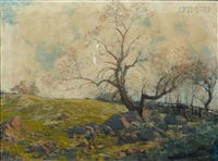 a new england pasture old apple tree by hermann dudley murphy