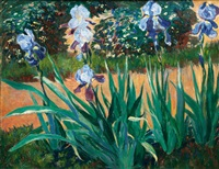 blue iris by arthur illies