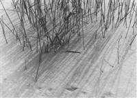 schnee by rudolf rattinger