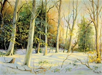 snow covered forest by paul wesley arndt
