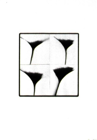 schamwerk pubic work ouvrage de pudeur by friederike pezold