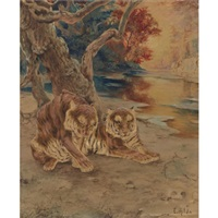 a pair of tigers resting under a tree by e. baily hilda