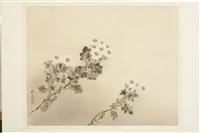 untitled by kyujin yamamoto