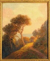 sentiero sulla costa by andrea figari
