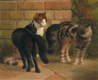 katzen by thomas percy earl