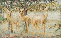 kudu in the veld by zakkie (zacharias) eloff