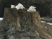 conch shells; path to the shore; driftwood (3 works) by david ligare