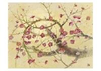 red plum by takao yamazaki