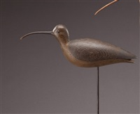 curlew by mark mcnair