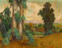 eucalyptus - san fernando valley by frederick almond zimmerman