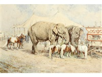circus elephants and ponies by william woodhouse