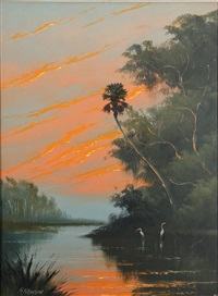 sunset in the bayou by harold newton
