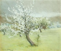 orchard in blossom by george agnew reid