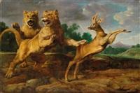 zwei löwinnen jagen einen rehbock by frans snyders