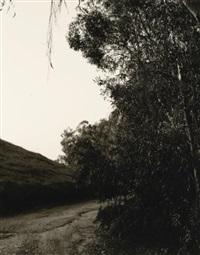 next ilo, redlands, california by robert adams