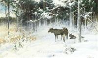 vinterlandskap med älgar i skogsbryn by arvid mauritz lindström