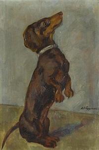 begging dachshund by karl friedrich lippmann