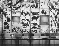 spectrum of life, museum of natural history by matthew pillsbury