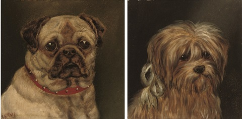 study of a pug study of a scottish terrier pair by edward aistrop