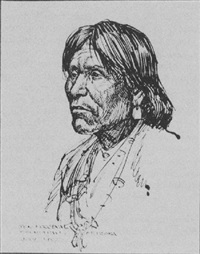 shumoapavi, arizona by don louis perceval