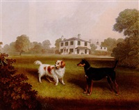 a spaniel and a black-tan terrier in the grounds of a country house by charles dickinson langley