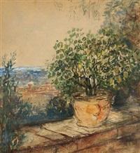 citronnier sur la terrasse by pierre laprade