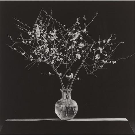 Flowers Branches In Vase By Robert Mapplethorpe On Artnet