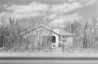 tucson, arizona by henry wessel
