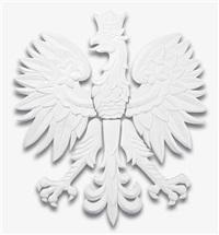 untitled (eagle) by piotr uklanski