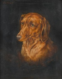 """otter"" portrait of a dachshund by robert morley"