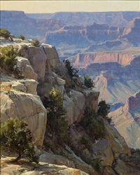 overlooking the grand canyon by clyde aspevig