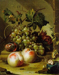 grapes, pomegranates and a plum on a stone ledge, with peaches, a snail and mushrooms by willem grasdorp