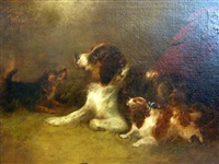 a pair of studies of dogs in an interior by george armfield