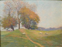 sheep grazing on hillside by george g. adomeit