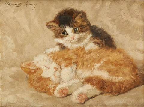 chatons by henriette ronner knip