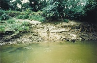 silueta works in iowa by ana mendieta